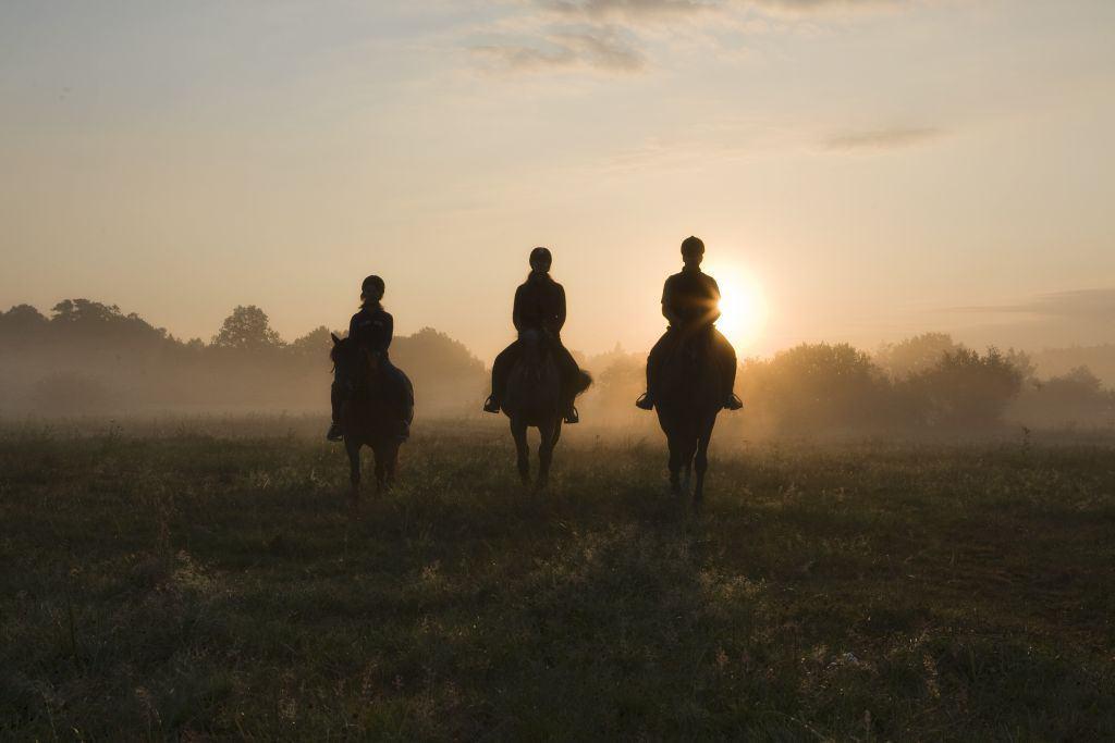 Atrakcje dla aktywnych - Ustka - Jeździectwo