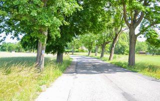 Ścieżki rowerowe w Ustce