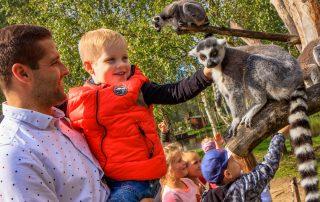 Zoo w Dolinie Charlotty