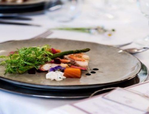 Ustecka gastronomia przygotowuje dania na wynos